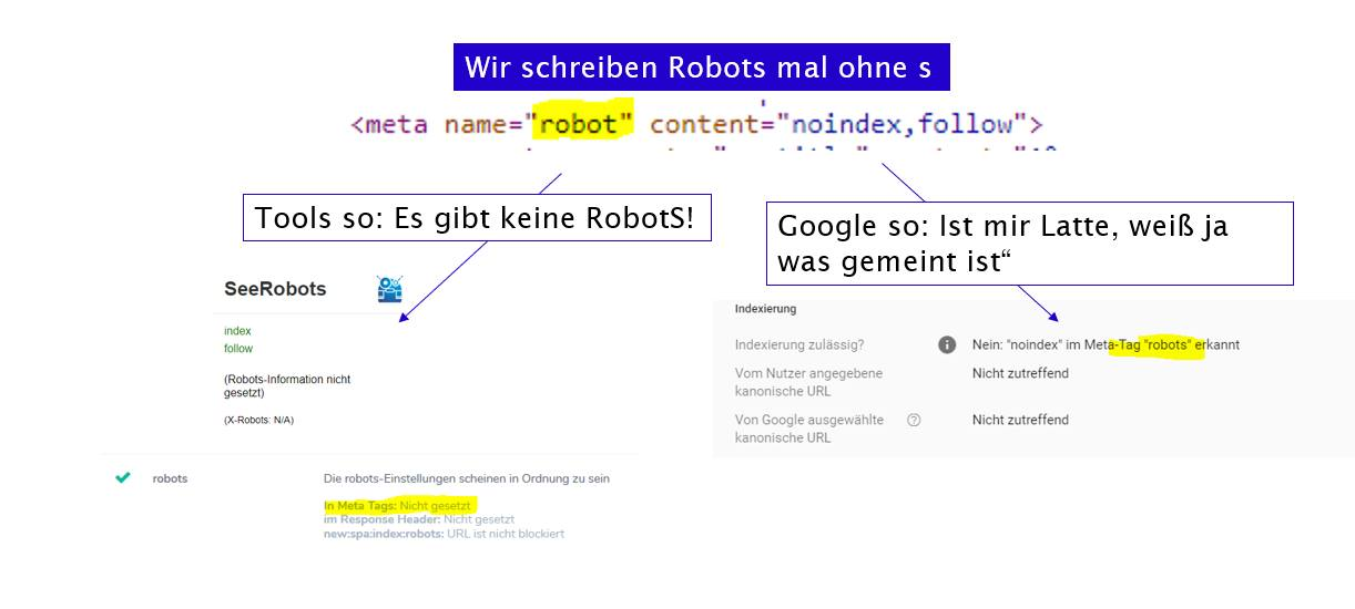Fehlbenennung des Robots-Tag